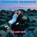 The Soft Boys - Underwater Moonlight