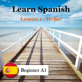 Learn Spanish Smalltalk With 4 Basic Dialogs Spanish Only