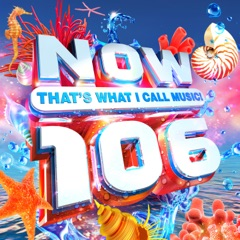 NOW That's What I Call Music! 106