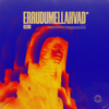 ICEKIID - Errudumellahvad artwork
