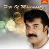 Hits of Mammootty