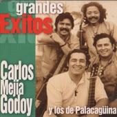 Carlos Mejía Godoy y los de Palacagüina - Quincho Barrilete