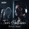 Teri Palkien (feat. Shehroze Hussain) - Single