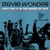 Can't Put It In The Hands Of Fate (feat. Rapsody, Cordae, Chika & Busta Rhymes) by スティーヴィー・ワンダー