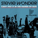 Stevie Wonder - Can't Put It In The Hands Of Fate (feat. Rapsody, Cordae, Chika & Busta Rhymes)