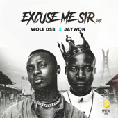 Excuse Me Sir Feat. Jaywon Wole DSB - Wole DSB