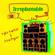Vybz Kartel & Lisa Hyper - Irreplaceable (Radio Edit)