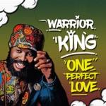 Warrior King & Jimmy Splif Sound - One Perfect Love