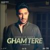Gham Tere Single