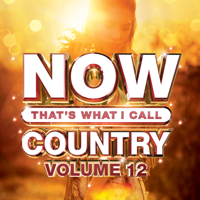 NOW That's What I Call Country, Vol. 12, Various Artists