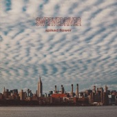 Swervedriver - Spiked Flower