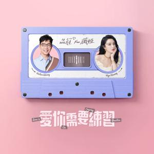 品冠 - 愛你需要練習 feat. 薇婭