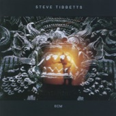Steve Tibbetts - Travel Alone