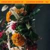 Elevation Worship - Tumbas A Jardines (Graves Into Gardens) [feat. Brandon Lake]