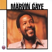 Marvin Gaye - Your Precious Love