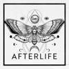 THE HARA - Afterlife artwork
