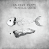 Snarky Puppy - Immigrance  artwork