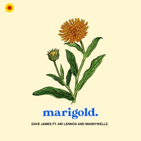 Marigold - Single (feat. Ari Lennox & Mannywellz) - Single