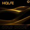 Haise - Gold Digger artwork