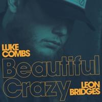 Beautiful Crazy (Live) [feat. Leon Bridges] - Single
