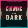 Icon Glowing In the Dark (Dance System Rework) - Single