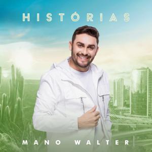 Mano Walter & Wesley Safadão - Tropecei