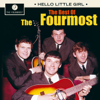 The Fourmost - You Got That Way bild