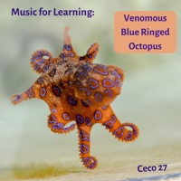 Music for Learning: Venomous Blue Ringed Octopus - Single