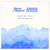 Above & Beyond & Armin van Buuren - Show Me Love (Sander Van Doorn Remix) bild