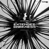 Dave Steward - Extended Darkness artwork