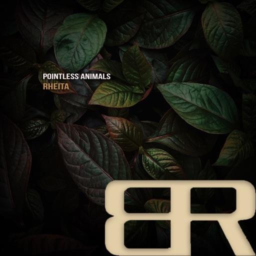 Rheita - Single by Pointless Animals