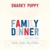 Snarky Puppy - Too Hot to Last (with Lucy Woodward)