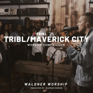 Waldner Worship - TRIBL COVER (Instrumental)