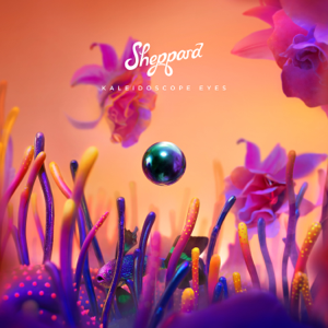 Sheppard - Learning to Fly