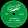 Incognito - Feel The Real (Micky More & Andy Tee Classic Radio Edit) ilustración
