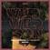 Wild Wild Son (feat. Sam Martin) [Richard Durand Remix] - Armin van Buuren