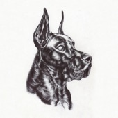 Great Dane - Invite Only