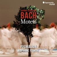 Pygmalion & Raphaël Pichon - Johann Sebastian Bach: Motets artwork