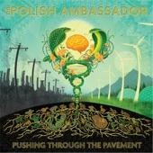 The Polish Ambassador - Gathering of the Tribes