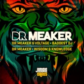 Dr Meaker - Baddest DJ (Radio Edit)