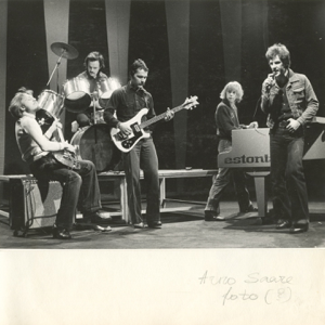 RUJA - Pop RUJA (1981-1982)