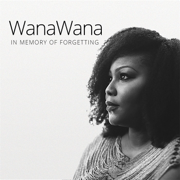 In Memory of Forgetting - Wanawana