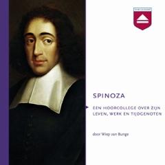 Spinoza: Hoorcollege over Zijn Leven, Werk En Tijdgenoten