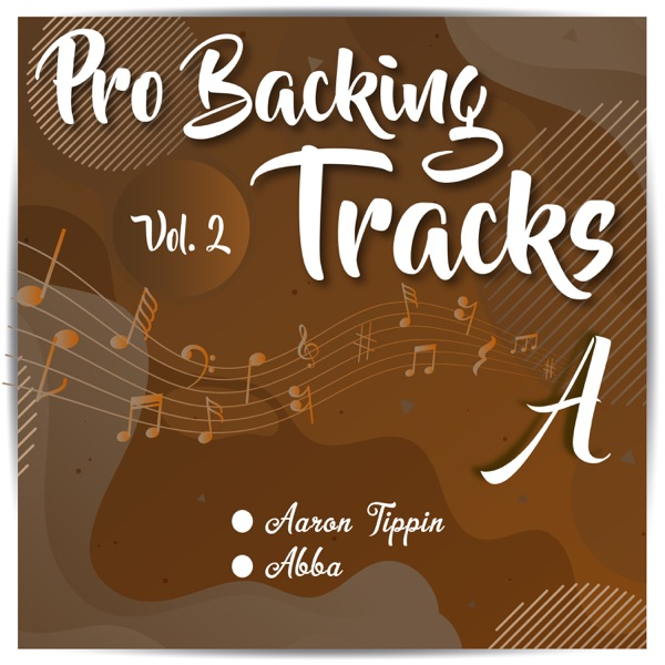 Pro Backing Tracks A, Vol. 2