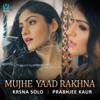 Mujhe Yaad Rakhna Single