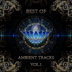Best of Ambient Tracks, Vol. 1