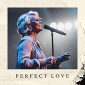 Perfect Love - Lisa Brunson