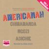Chimamanda Ngozi Adichie - Americanah Grafik