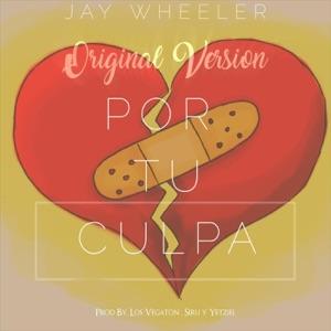 Por Tu Culpa - Single Mp3 Download