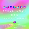 Waste It on Me feat BTS Steve Aoki the Bold Tender Sneeze Remix Single